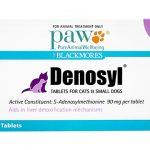 デノシル(猫と小型犬用、中・大型犬用)の口コミから肝機能への効果と副作用、通販最安値を検証
