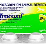 トロコキシル(犬用)の口コミから鎮痛効果と副作用、通販最安値を検証