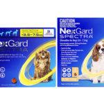 ネクスガードスペクトラ(犬用)の口コミから効果と期間、安全性と副作用、体重毎の通販最安値を検証