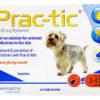プラクティック(犬用ノミ・マダニ薬)の口コミから効果的な使い方と副作用、通販最安値を検証