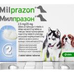 ミルプラゾン(犬用)の口コミから効果と副作用、通販最安値を検証