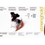 ストロングホールド[EU版レボリューション](犬用)の口コミからマダ二への薬の効果と通販最安値を検証